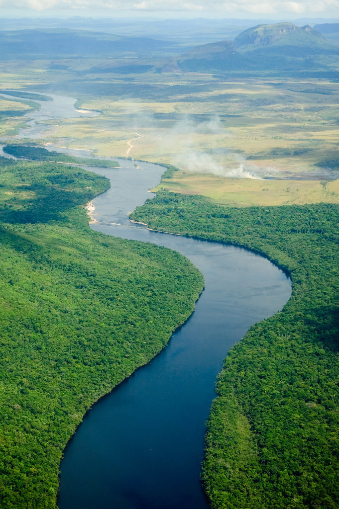 Cruise Down the Amazon River