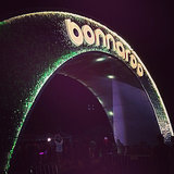 Bonnaroo Instagram Pictures 2014