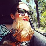 Emmy Rossum enjoyed the warm weather with her dog, Cinnamon. Source: Instagram user emmyrossum