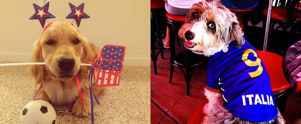 The Cutest Dogs of Instagram Represent Teams For the World Cup