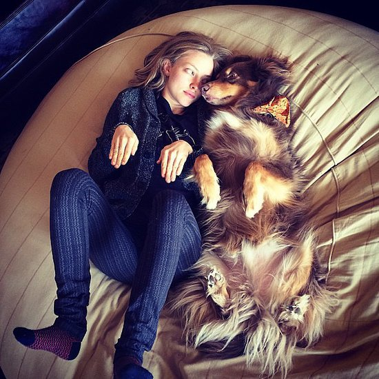 Amanda Seyfried and Her Dog Finn Pictures on Instagram