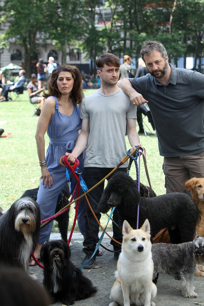 We Don't Know What Daniel Radcliffe Is Doing, but We Like It