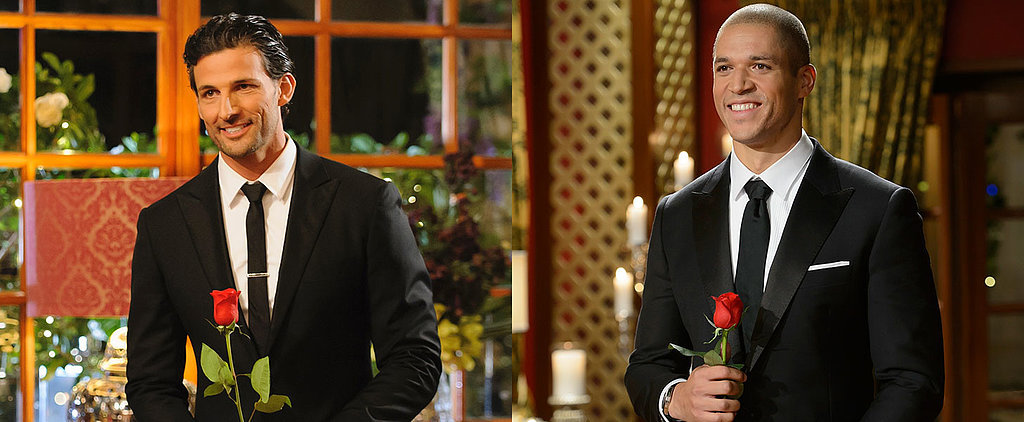 Which Bachelor Would You Prefer to Date?