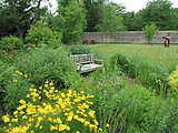 How to Design a Garden That Lasts (7 photos)