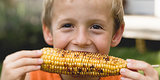 5 Myths About Corn You Should Stop Believing