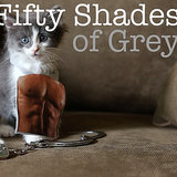 50 Shades of Grey Parodies | Video