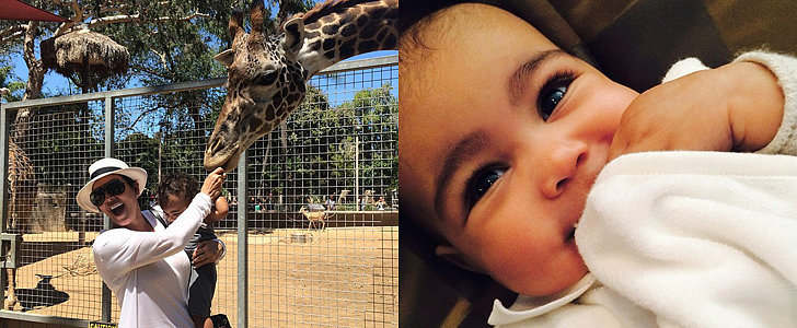 North West Has a Sweet Day at the Zoo With Her Family