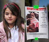 Suri Cruise's New Dog Is Missing