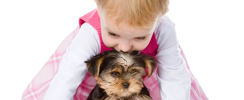 Watch Why Dogs Make the Perfect Babysitters