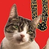 "Meet ""Meow The Jewels,"" A Rap Album Made Up of Cat Sounds"
