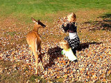Not Ready for Fall? These Girls Playing with a Deer in Leaves Will Change Your Life