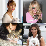 Meow! 13 Famous Women Who Redefine