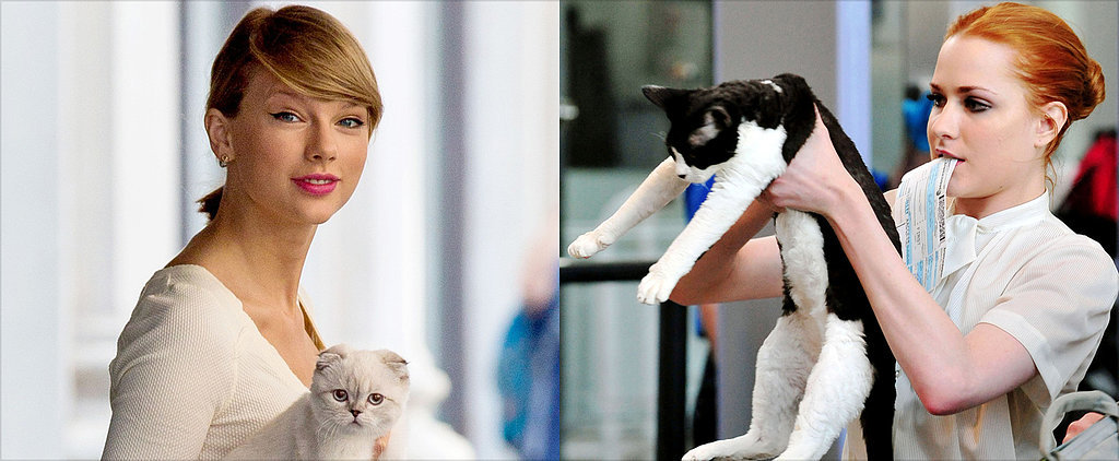 """Meow! 13 Famous Women Who Redefine """"Cat Lady"""""""