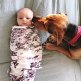 Adorable Pictures of Babies and Dogs