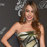 Sofia Vergara's Awkward Run-In With Her Ex Will Definitely Make You Cringe