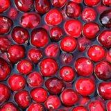 POPSUGAR Shout Out: Make the Most of Harvest Season