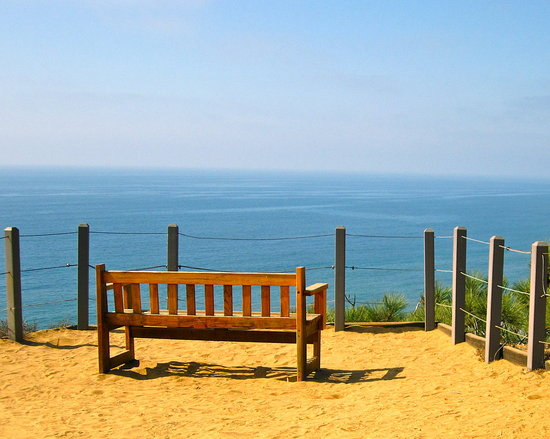 Bench at Torrey Pines
