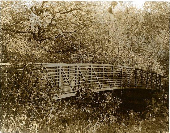 Sepia Bridge