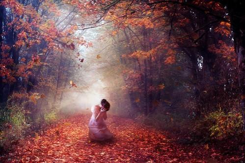 Autumn's Despair