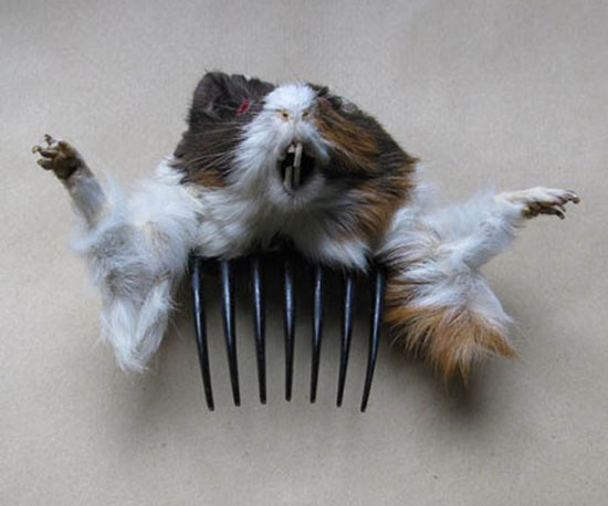 Attack of the Taxidermied Hair Accessories!