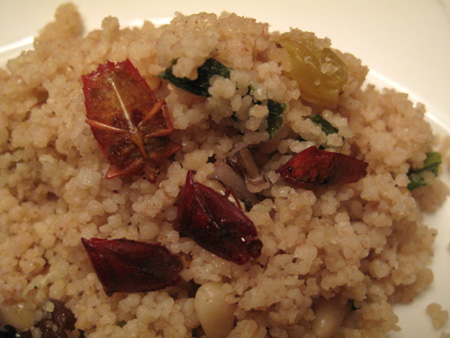 Couscous With Red Shield Bugs