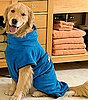 Dog Drying Robe: Spoiled Sweet or Spoiled Rotten?