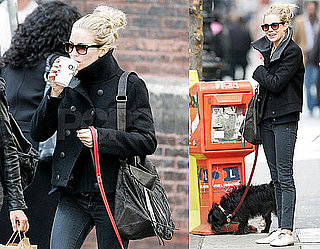 Photos of Sienna Miller in NYC Walking Her Dog Bess