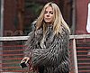 Slide Photo of Sienna Miller Walking Her Dog Bess in NYC