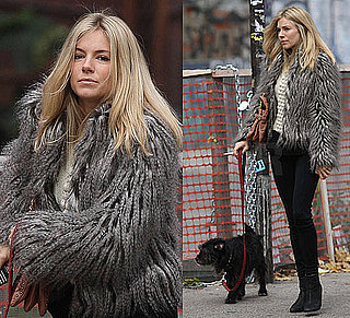 Photo of Sienna Miller in Fur Jacket and Black Pants Walking Dog in NYC