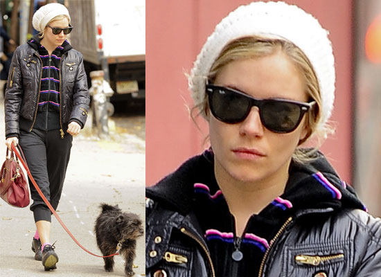 Photos of Sienna Miller Walking Her Dog in New York