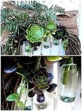 I love succulents, and I adore this wreath, too, of course. I love the tiny little vials used to keep the stems hydrated. Source