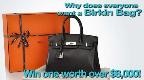 Why Does Everyone Want a Birkin Bag?