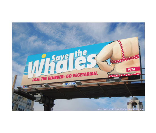 """<a href=""""http:/... Save the Whales Ad: On Target or Over the Line?</a>"""