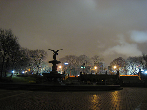 Central Park looks moody on New Year's Eve, thanks to the fog and spectral lighting.  Source:  Flickr User i eated a cookie