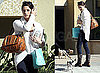 Photos of Ashley Greene Saying Bye to Her Dog as She Departs Her Home in LA