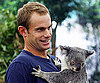 Slide Photo of Andy Roddick Visiting a Koala Sanctuary in Australia