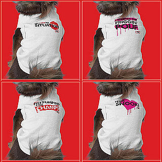Are Your Pets Ready to Rock Jersey Shore Gear?