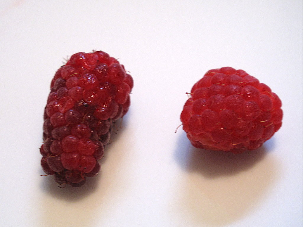 A tayberry (left) next to a red raspberry (right).