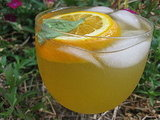 Orange Basil White Wine Sangria Recipe 2009-09-03 16:10:03