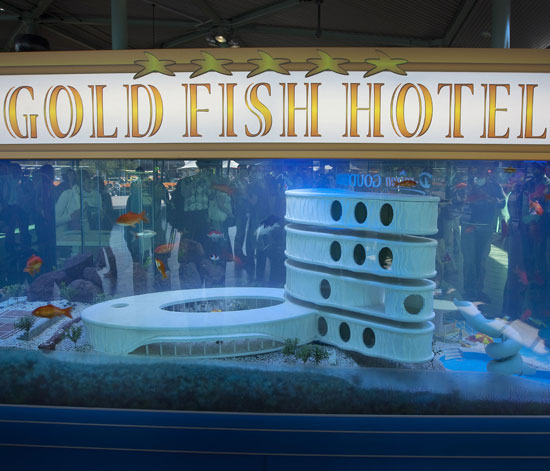 Check Out the World's First Hotel For Pet Fish!