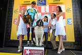 Saint Bernards Greet Tour De France Leader