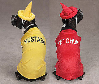 Condiment Costumes: Spoiled Sweet or Spoiled Rotten?