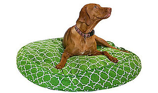 New Product Alert! Molly Mutt's New Patterns and Round Beds