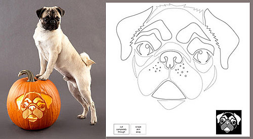 Get Crafty: Downloadable Dog Breed Pumpkin Stencils!