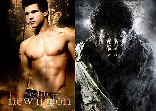Maggie Stiefvater Novel About Werewolves to Be Adapted Into Movie