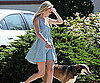 Photo Slide of Kate Bosworth Walking Her Dog in LA