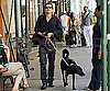Photo Slide of Orlando Bloom Walking His Dog in NYC
