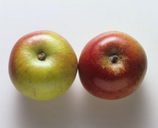 Travel Tip: Before You Book, Compare Apples to Apples