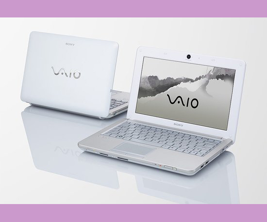 Sony Adds VAIO W to Repertoire
