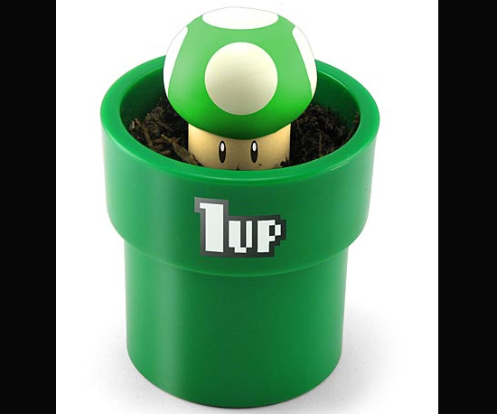 Grow Your Own 1-Up Mushroom